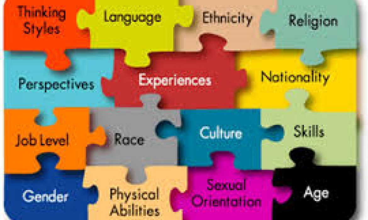 Indian Diversity Dimensions and Their Organization Challenges
